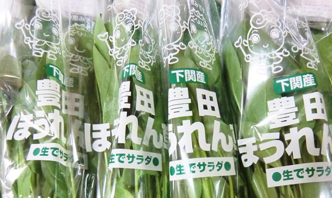 tokusan_pic_hourensou_3